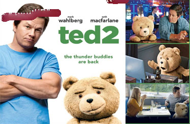 TED 2 Indian DVD Out Now !!!